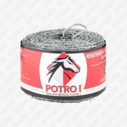 Picture of Potro I